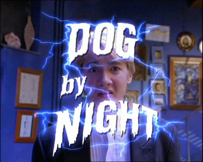 Round_The_Twist_Dog_By_Night